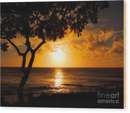 Turtle Bay Sunset Wood Print