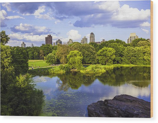 Vista Rock View 2  - Central Park - Manhattan Wood Print
