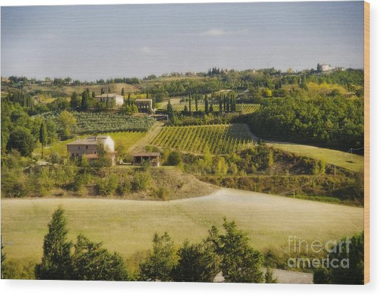 Tuscan Landscape Wood Print by Jim  Calarese