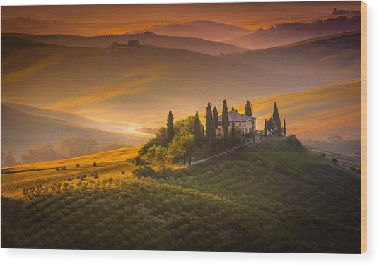 Tuscan Morning Wood Print