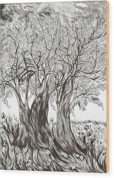 Tuscany Olives Wood Print
