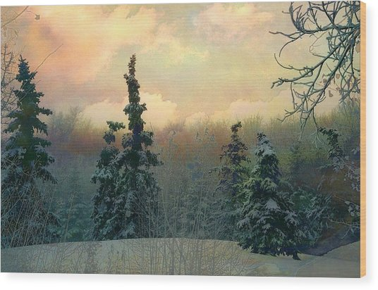 Twilight In The Forest Wood Print