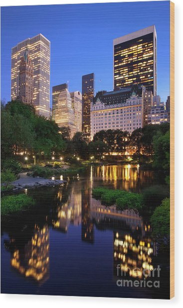 Wood Print featuring the photograph Twilight Nyc by Brian Jannsen