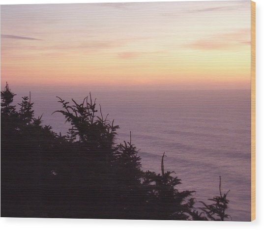 Twilight On The Coast Wood Print by Yvette Pichette