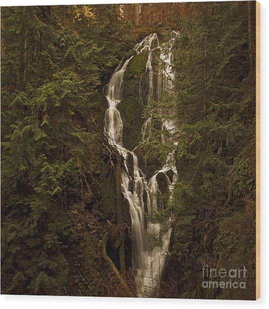 Twilight Waterfalls  Wood Print