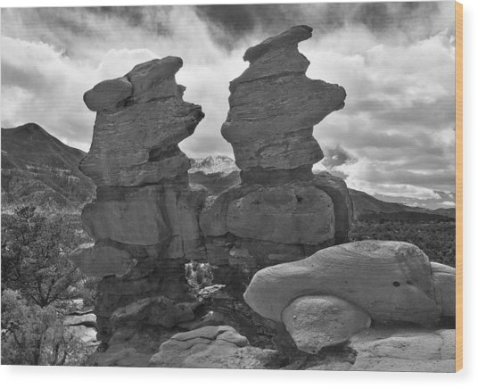 Wood Print featuring the photograph Twin Toadstools by Mae Wertz