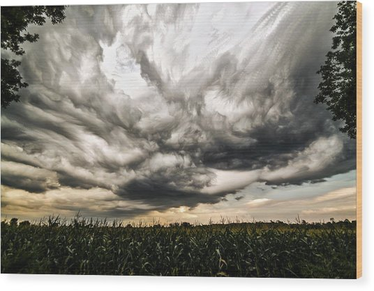 Twisted Sky Wood Print by Matt Molloy