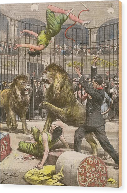 Two Acrobats Fall Into The  Lions' Wood Print by Mary Evans Picture Library