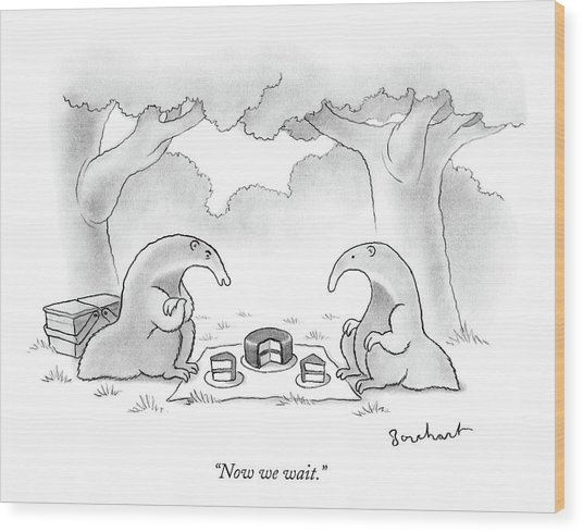 Two Anteaters On A Picnic Wait For Ants To Come Wood Print