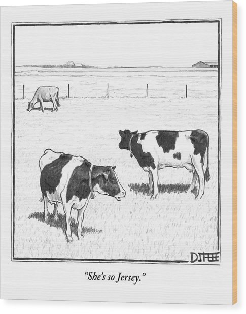 Two Spotted Cows Looking At A Jersey Cow Wood Print