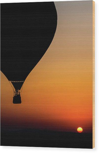 Two Balloons Wood Print