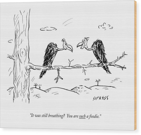 Two Buzzards Sit And Talk On A Branch Wood Print