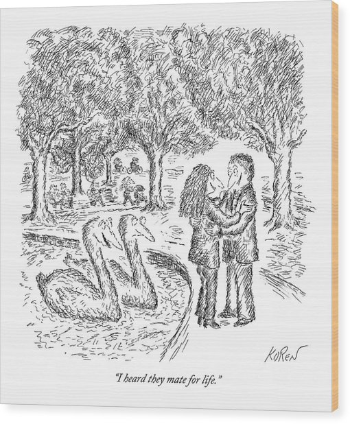 Two Ducks Observe A Man And Woman Embracing Wood Print