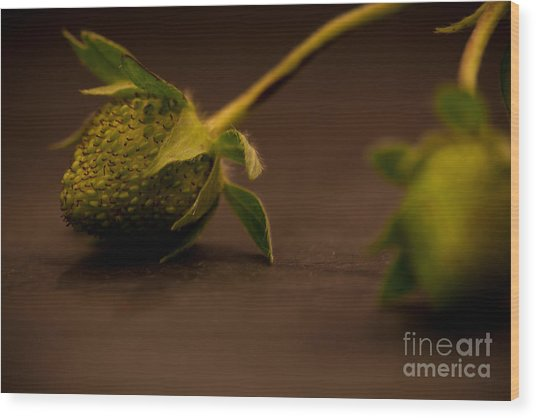 Two Green Strawberries Wood Print by Patricia Bainter