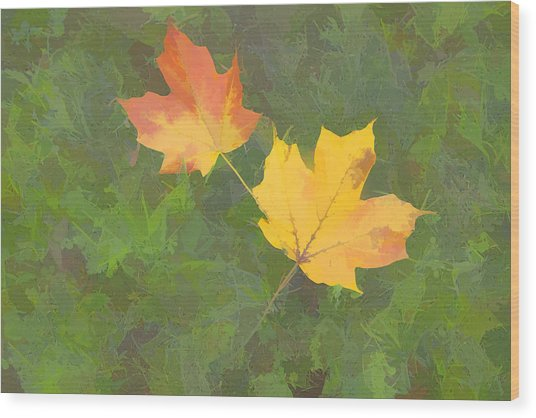 Two Leafs In Autumn Wood Print by Indiana Zuckerman