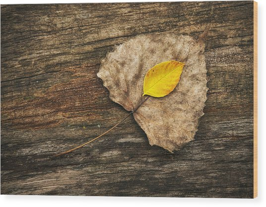 Two Leaves  Wood Print