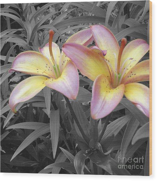 Two Lilies Wood Print by Stephen Prestek