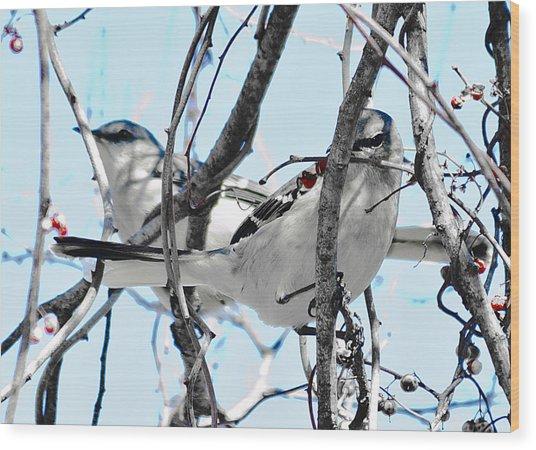 Two Mocking Birds Wood Print