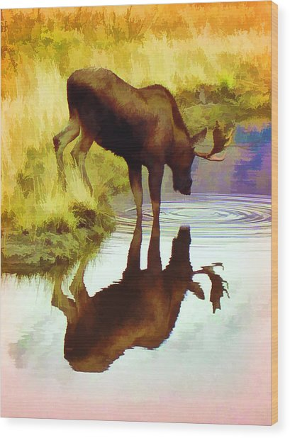 Two Moose  Wood Print
