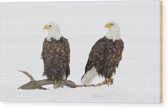 Two Of A Kind Wood Print by John Blumenkamp