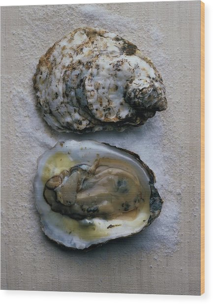 Two Oysters Wood Print