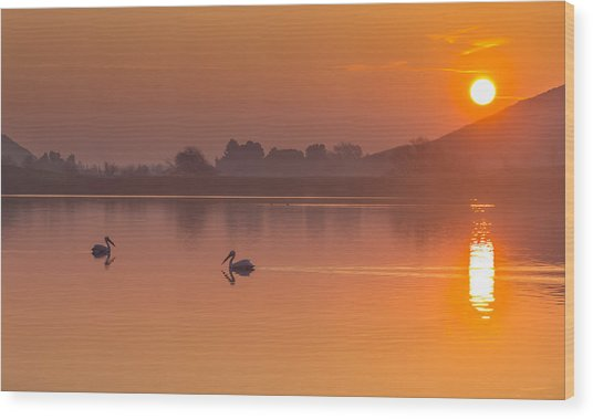 Two Pelicans At Sunrise Wood Print