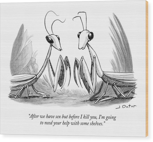 Two Praying Mantises Facing Each Other Wood Print