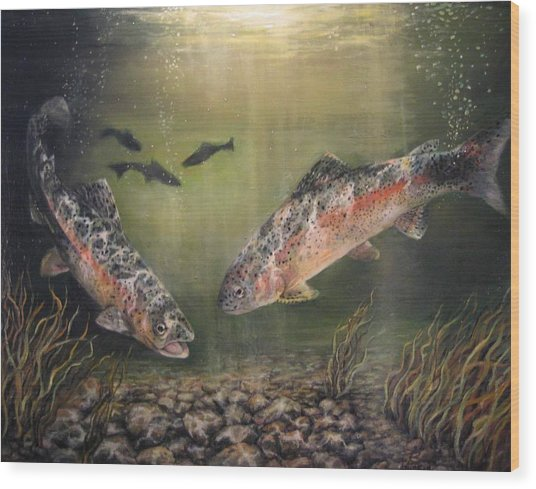 Two Rainbow Trout Wood Print