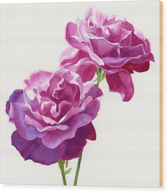 Two Red Violet Rose Blossoms Square Design Wood Print