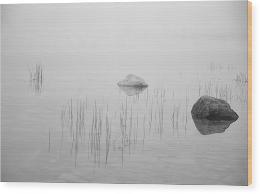 Two Rocks Bw Wood Print