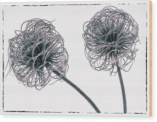 Two Seeds Wood Print