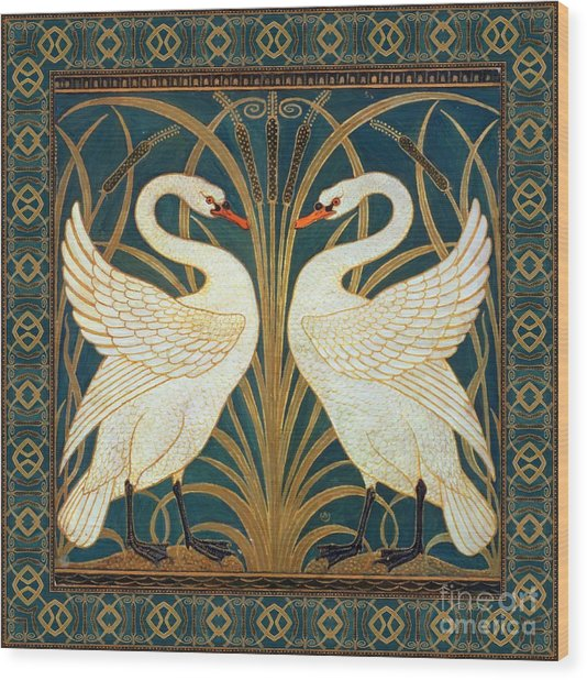 Two Swans Wood Print
