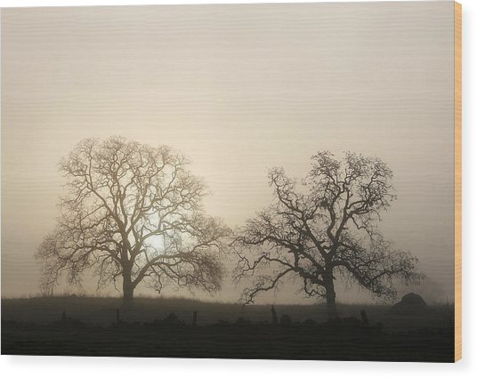 Two Trees In Fog Wood Print