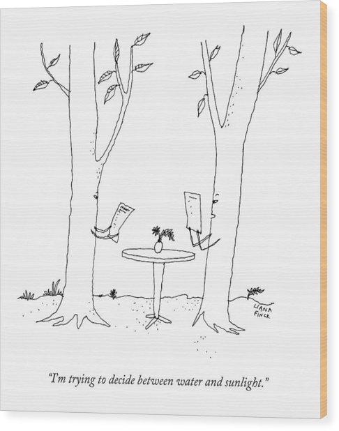 Two Trees Look At Restaurant Menus Wood Print