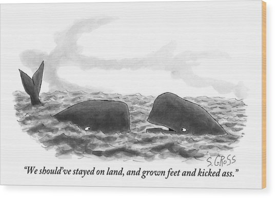 Two Whales Are Seen In Water In Conversation Wood Print