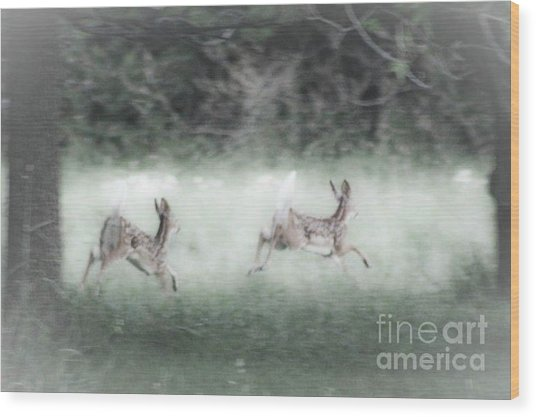 Two Whitetail Fawns Running Wood Print