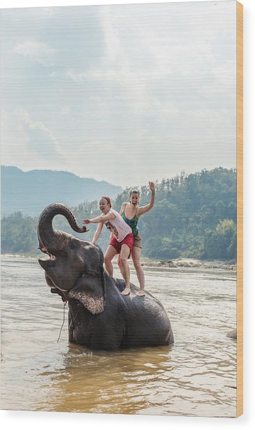 Two Young Women Riding An Elephant In The Mekong Wood Print by Matteo Colombo