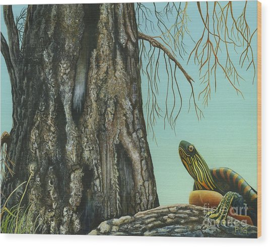 Tyler And The Tree Wood Print
