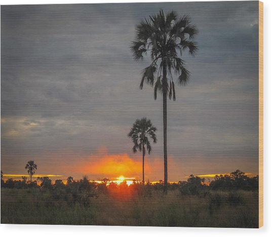 Typical African Sunset Wood Print
