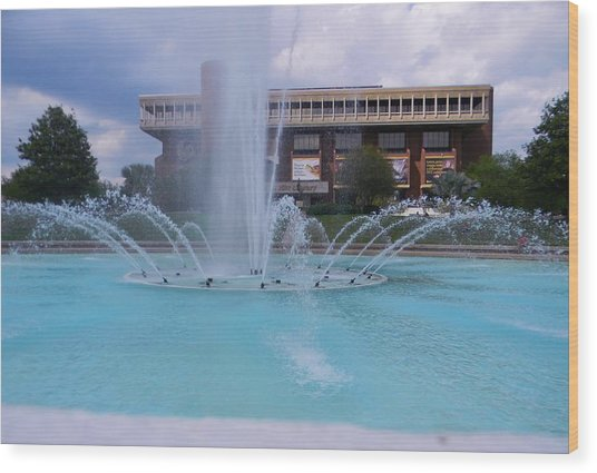 Ucf Reflection Pond 2 Wood Print