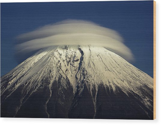 Umbrella Wood Print by Akihiro Shibata