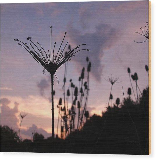 Umbrella In The Wind 2 Wood Print by Elizabeth Sullivan