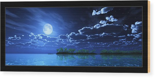 Under A Silvery Moon... Wood Print