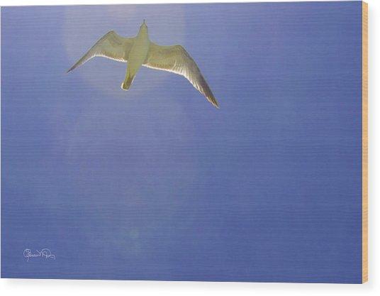 Under His Wings II Wood Print