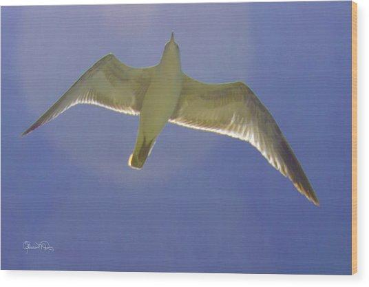 Under His Wings IIi Wood Print