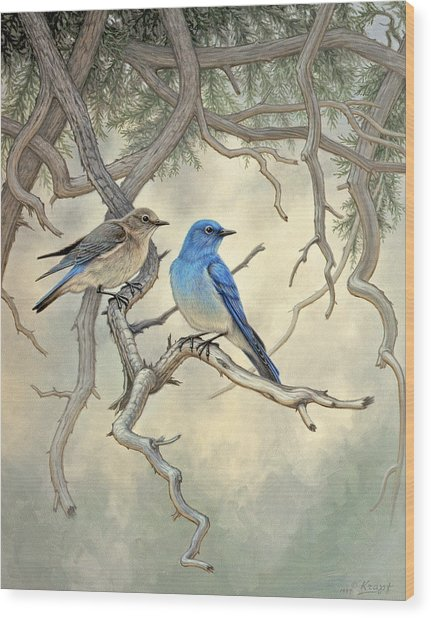 Under The Old Juniper-mountain Bluebirds Wood Print