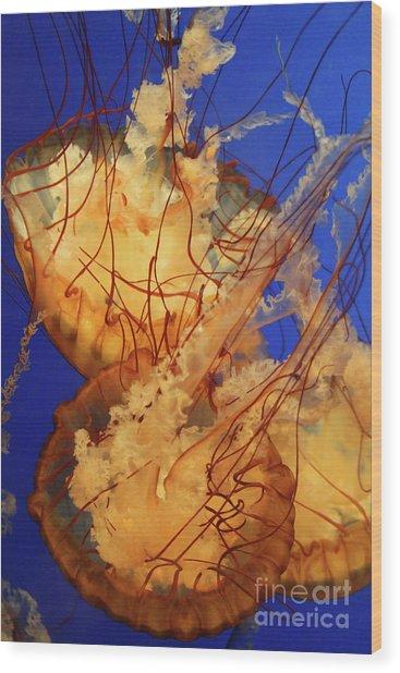 Underwater Friends - Jelly Fish By Diana Sainz Wood Print
