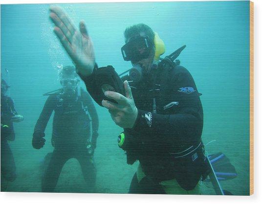 Underwater View Of Scuba Divers Wood Print