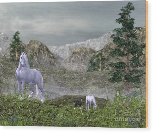 Unicorns In The Mountains Wood Print