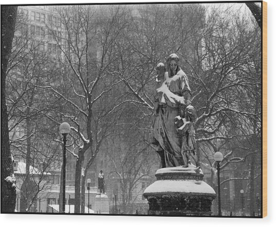 Union Square Park Wood Print